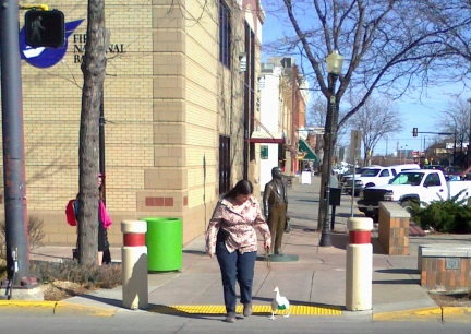 Dinah Crossing the big white lines in Rapid City, SD 2012-03-12